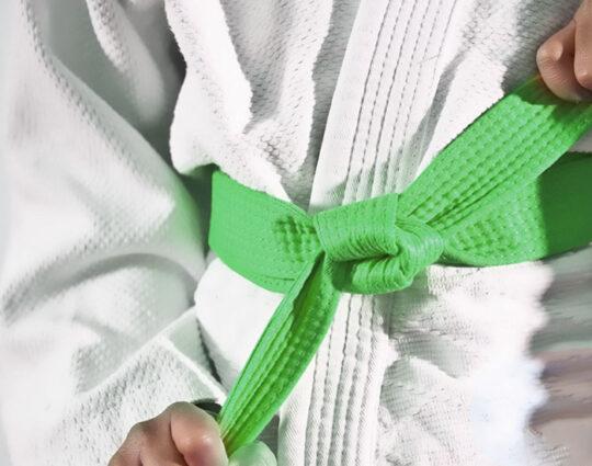 LSS Georgia-Lean Six Sigma Green Belt