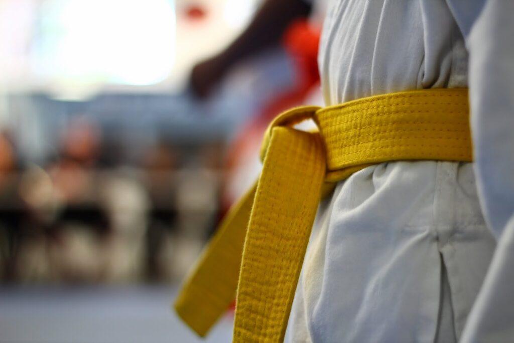 LSS Georgia-Lean Six Sigma Yellow Belt